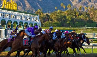 Santa Anita Park: Speed thrills