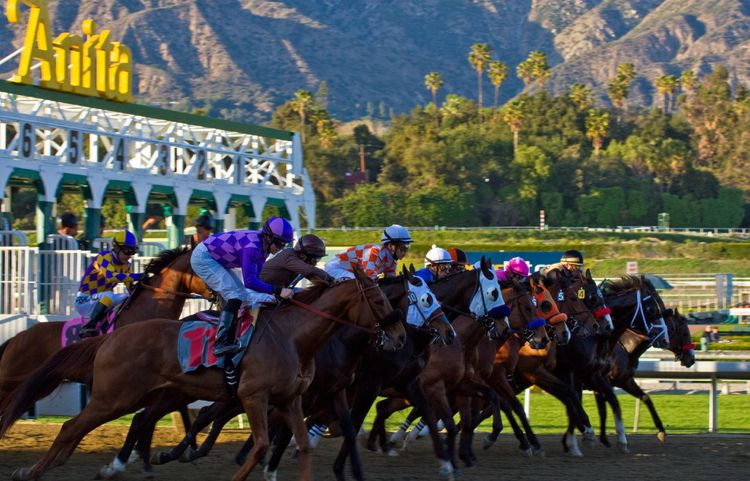 Santa Anita Park Speed Thrills At The Track